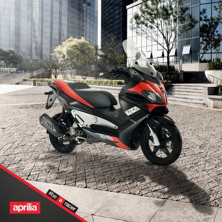 The one and only name for the best 300cc.  #aprilia #bearacer