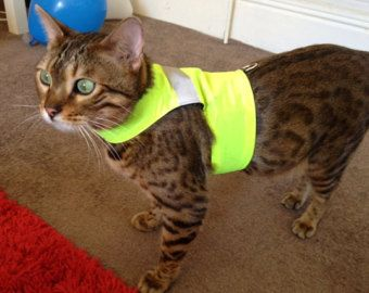 High Visibility - Yellow - LAND O'BURNS BENGALS Cat Walking Jacket/ Harness/ Vest