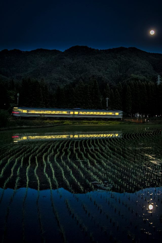 Night train runs through rice fields, Gifu, Japan