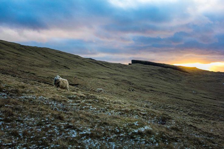 Jonas Feldfoss Rossum Portfolio - Billeder fra Færøerne