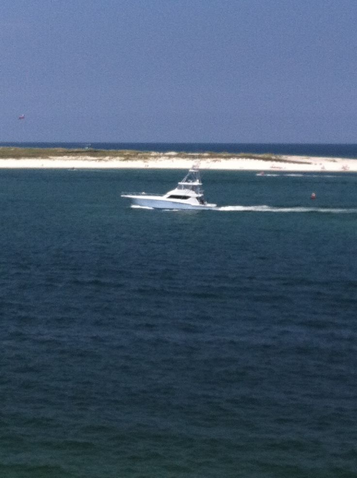 671 best gulf coast of the united states images on for Orange beach fishing charters