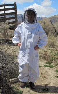 4 Things I've Learned About Bee Suits