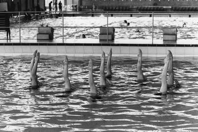 August 1977: British Synchronized Swimming Team Legs at Euro Championship. Photographic Print at Art.com