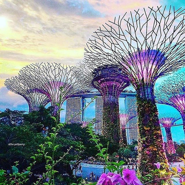 Follow @globefever for more. Vibrant colours at Marina Bay, Singapore. Photo by @dotzsoh