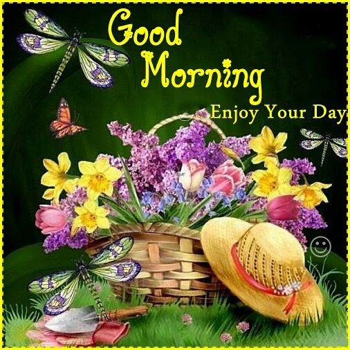 Good Morning! Enjoy this beautiful Sunday.  My sweet friend Cheryl. Ty.