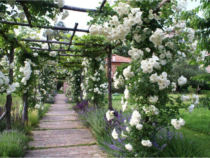 Secluded garden of the Palladio Hotel & Spa in the heart of Venice