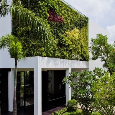 Thao Dien House: Location : Ho Chi Minh City, Vietnam Architect : MM   Architects/MIMYA Built : 2014  Remodeled into a sculpture of light and grace, the Thao Dien House has a great feeling of a minimalism space with a zen vibe. It's greatest feature is the living wall at the upper floor of the house. It provides the elevation with a green aesthetic that gives lots of curb appeal while providing the master suite a private garden oasis.