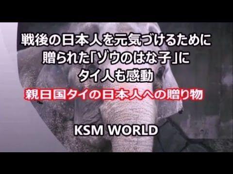 【KSM】親日国タイ 戦後の日本人を元気づけるために贈られた「ゾウのはな子」にタイ人も感動