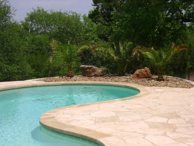 #Landscape design by a pool by DH Landscape Design