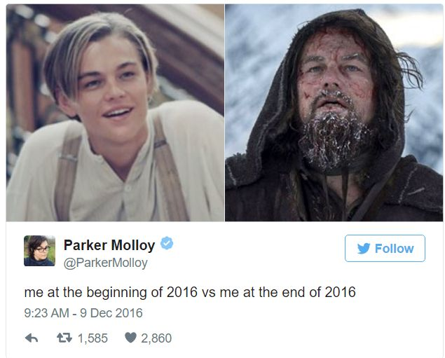 The Best of  'Me In 2016 ' Memes That Will Make You LOL