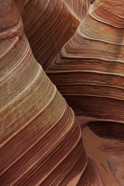 Paria Canyon-Vermillion Cliffs Wilderness, Arizona