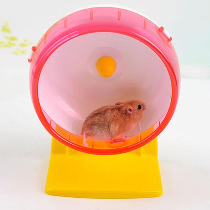 1pc 2 Size Funny Plastic Mouse Hamster Wheel Rat Mouse Jogging Playing Running Toys Exercise Wheels Random Send