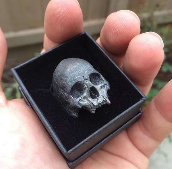 A very cool skull in a box.