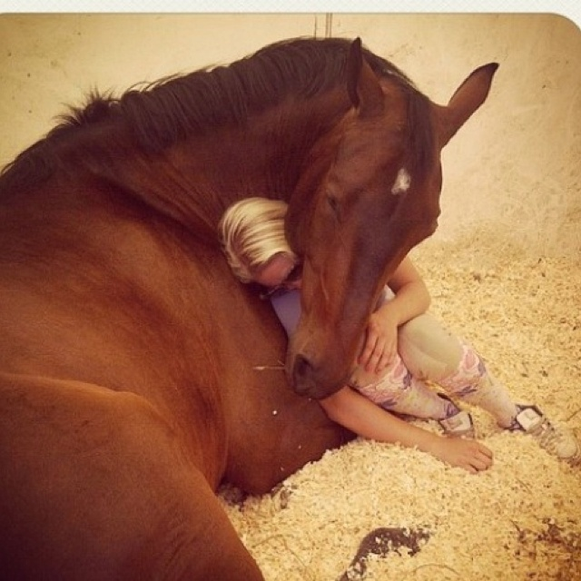 Look at the love on the horses face. What a beautiful friendship this is!