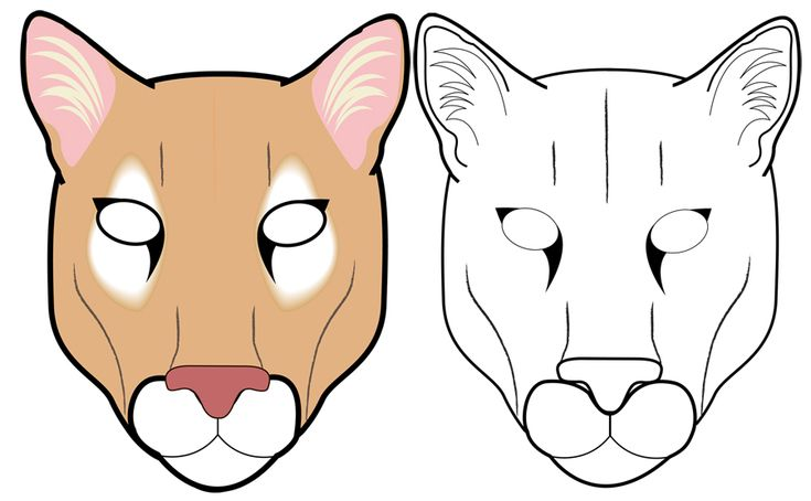 the betrayed florida panther essay Efforts to save the florida panther demonstrate how people and animals can get  along in an increasingly crowded world.