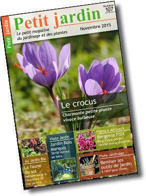 Magazine de jardinage gratuit avec calendrier lunaire pour jardiner avec la lune.