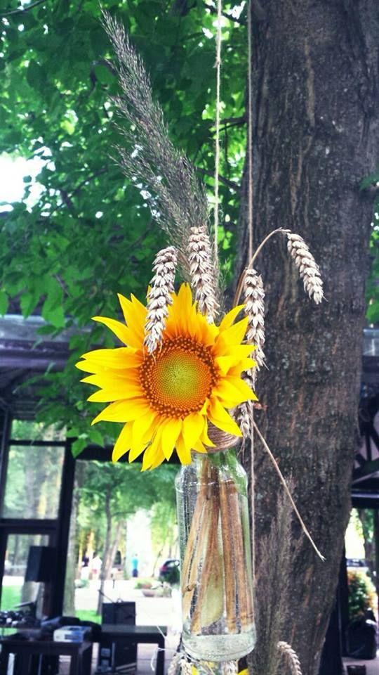Summer trees decorations - Wedfest Comana