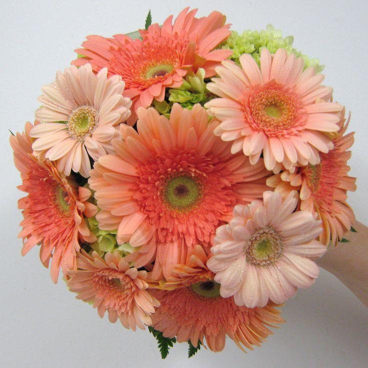peach wedding flowers | ... peach. The bridesmaids carried a simpler bouquet of peach gerbera