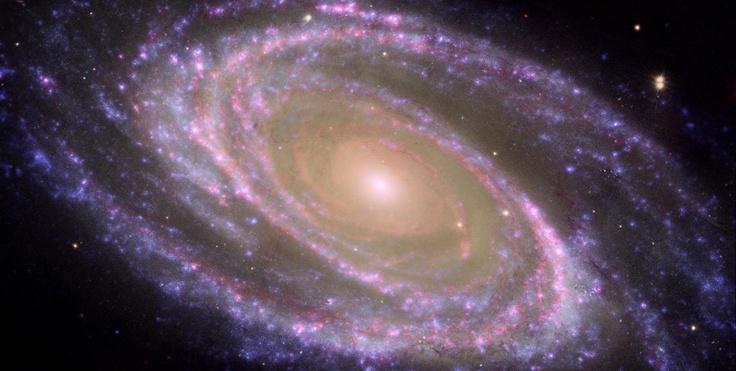 M81 Galaxy is Pretty in Pink | Spiral galaxy, Cosmos, Universe