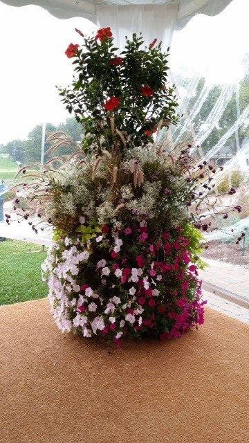 Artquest, Ltd floral accenting at Edgewood Valley Country Club in La Grange.   Check us out on Facebook and Instagram at artquestltd for more!