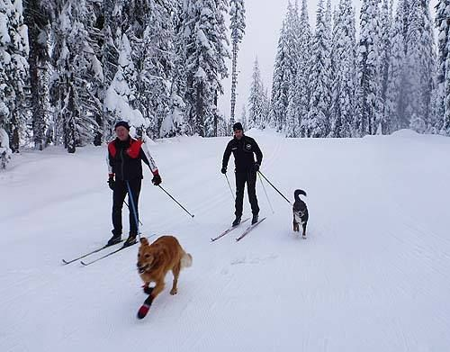 Tucker & Emma's friends go skiing on a regular basis here in Vernon!