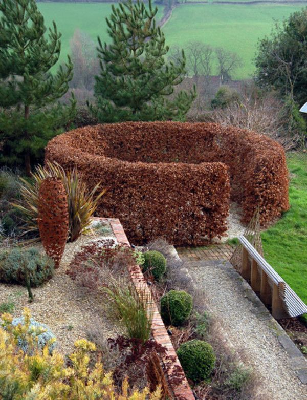 Circular Hedge of either Hornbeam or Beech.