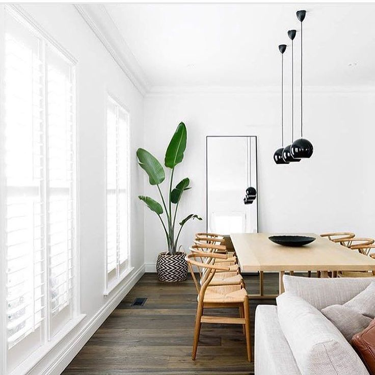 minimal and earthy open living and dining area with white, wood, natural light, tall plant, mirror, wicker chairs