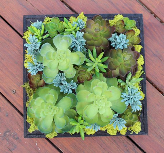 Artificial Succulent Wall Hanging Decoration Hanging