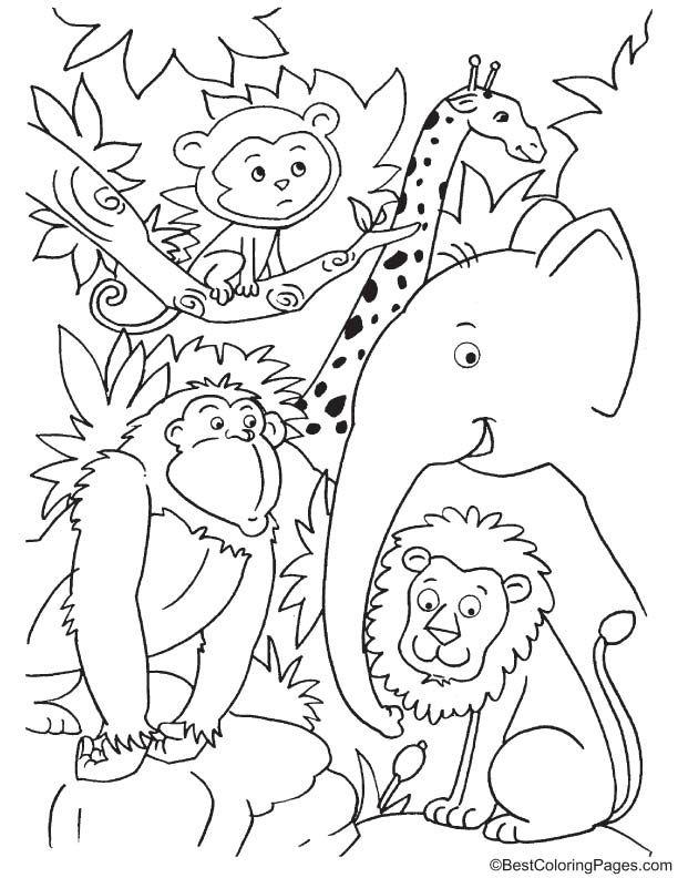 Cute Animals In Jungle Coloring Page Jungle Coloring Pages Animal Coloring Pages Zoo Coloring Pages