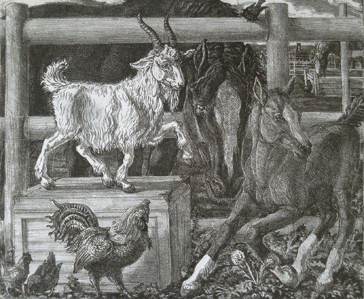 Людмила Томашевская - люди и кони. Белый козлик.