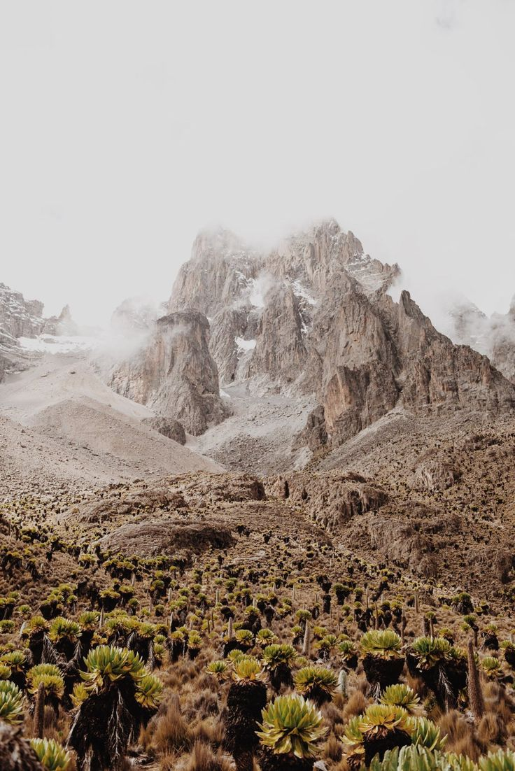 The hills of Mount Kenya are calling!