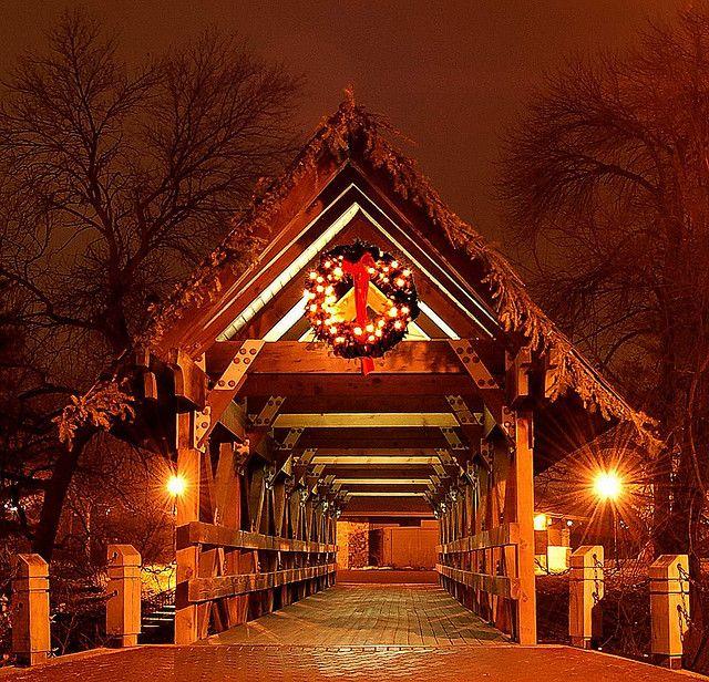 Christmas covered bridge    Night Photo - Naperville Riverwalk