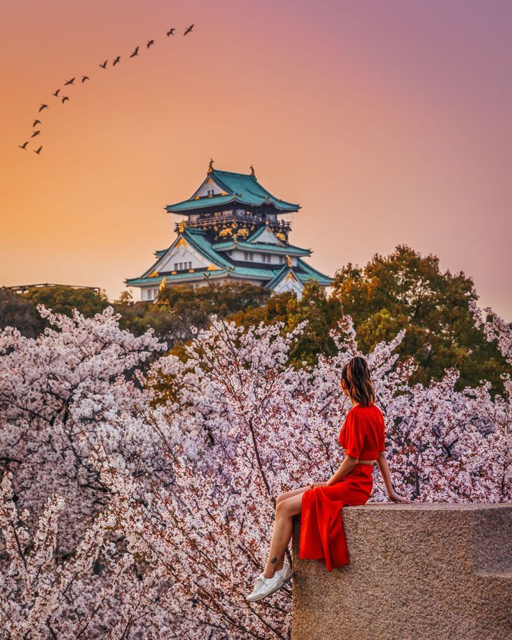 Instagrammable Spots In Japan 7 Gorgeous Spots For Cherry Blossoms In Japan Fotografi Jepang