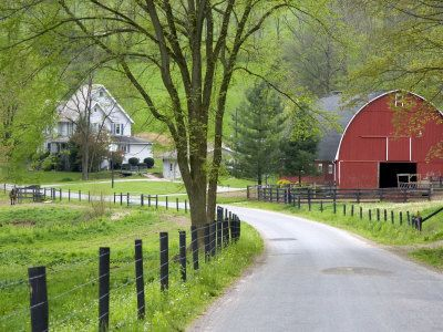 Another picture of Holmes County, Ohio.  It was so interesting to drive through the country lanes and see the Amish homes right on the roadside.  Beautiful barns, covered bridges, quilt shops and great restaurants.