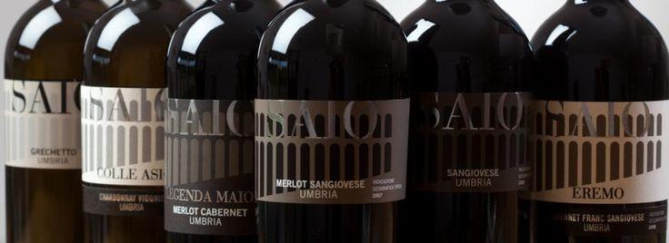 All SAIO Assisi wines