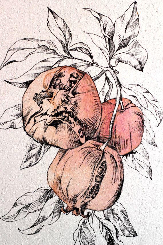 Original Drawing. Autumn Botanical art Ripe by AugustArtStudio