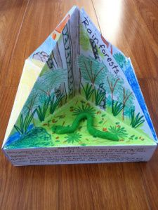 """""""trioramas"""" good for learning about habitats, animals, COGs/HSIE mini displays etc."""