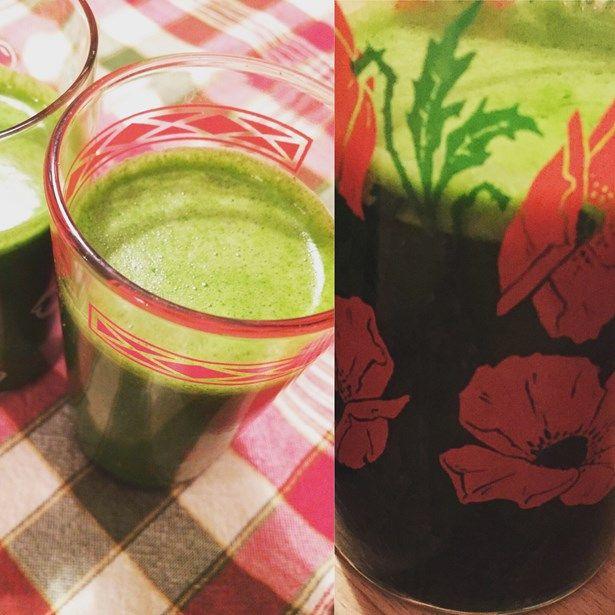 jus vert jacynthe rené pousses nutriif chlorophylle