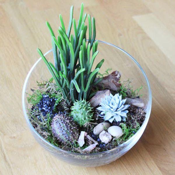 Die besten 25+ Moos terrarium Ideen auf Pinterest Terrarium, Diy - pflanzgefase aus moos