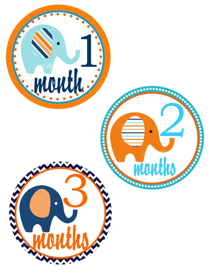 Orange and Blue Baby Boy Monthly Milestone Stickers 12 month Stickers Free Shipping in the United States by ALGDezigns on Etsy
