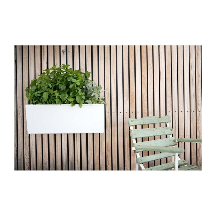 Glowpear - Mini Wall - Modern Pots & Planters Buy Your Homewares Online or In Store!