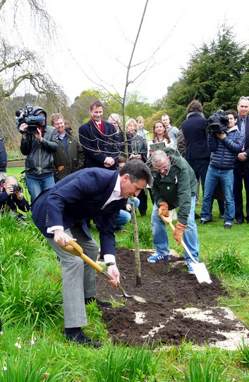 Seb Coe gets down and dirty to plant the oak. (ATR) Add Around The Rings on www.Twitter.com/AroundTheRings & www.Facebook.com/AroundTheRings for the latest info on the Olympics.