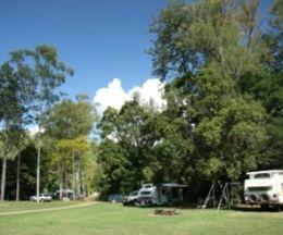 Cedar Grove camping area, Amamoor State Forest. Photo courtesy of Ross Naumann.