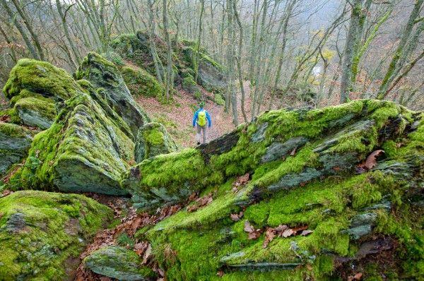 Wandelroutes Ourthevallei, Ardennen | Wandelen België | oppad.nl