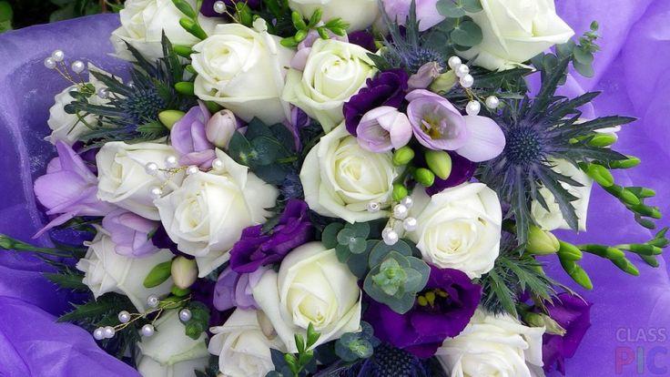 Красивые белые и фиолетовые цветы