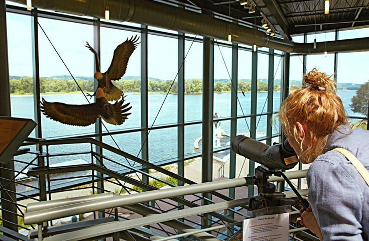 Top stops in wabasha and lake city minnesota more best for Ideas for mini vacations