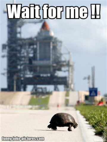 Funny Tortoise Space Shuttle Wait Meme Picture | Funny Joke Pictures