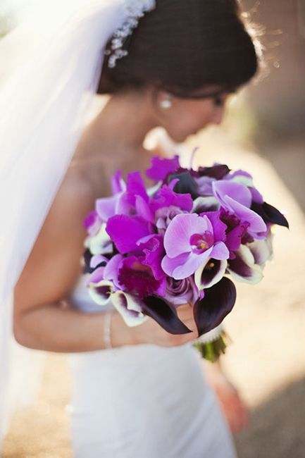 107 best Wedding and Event Flowers images on Pinterest Arizona