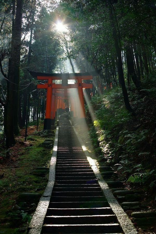 Gates to Prayer, Fushimi-Inari Shrine, Kyoto, Japan 伏見稲荷 京都