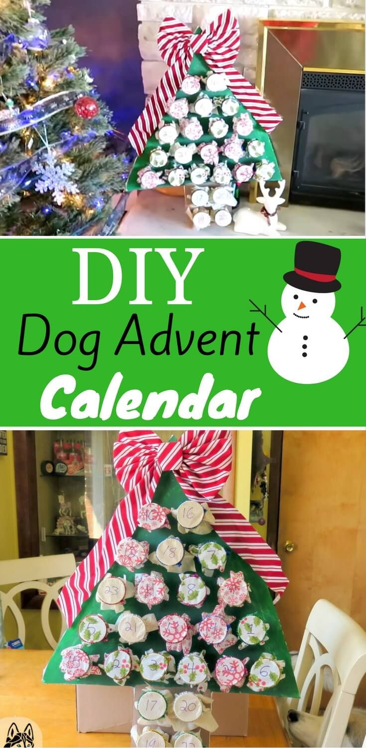 Calendar Advent Diy : Best dog advent calendar ideas on pinterest holiday